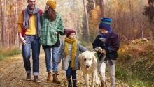 Őszi családi szünet Balatonfüreden Akadémia Hotel Balatonfüred