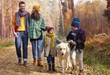 Őszi családi szünet Balatonfüreden